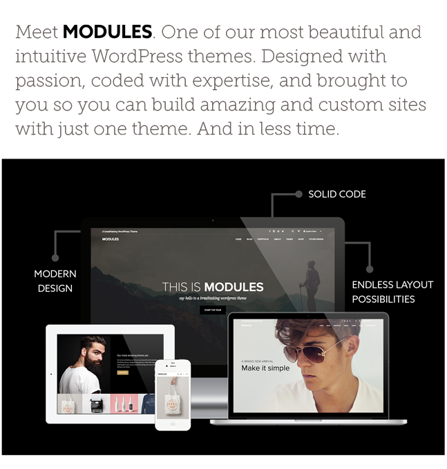 Modules WordPress Theme